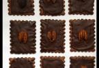 ביסקוויטים מצופים שוקולד מתכונים טבעוניים של יעלי שוחט