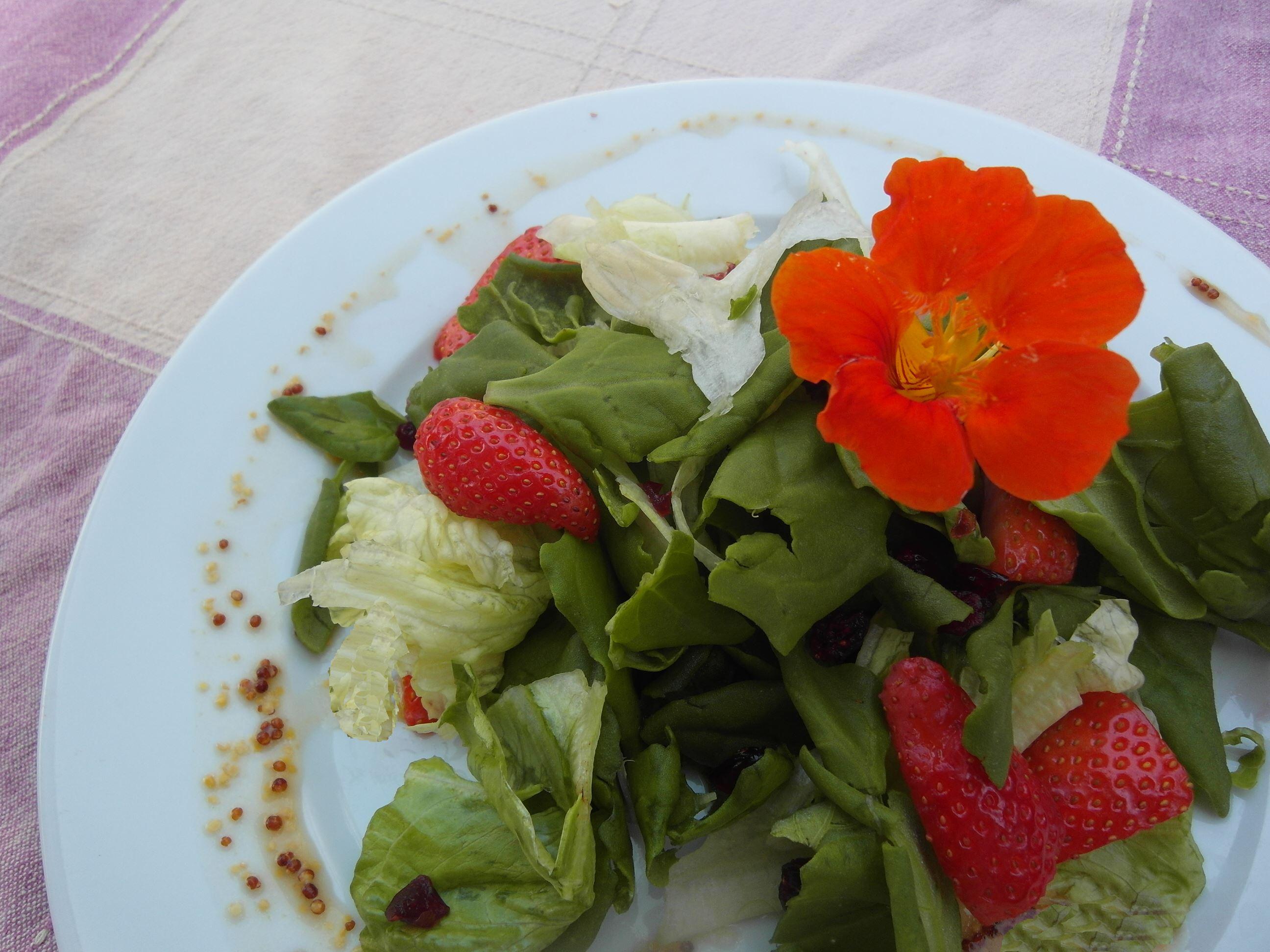 סלט תרד-תותים-חמוציות יום עצמאות טבעוני - מתכונים טבעוניים של השוחטת הטבעונית יעלי שוחט 1